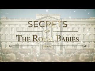 Secrets of the Royal Babies: Harry and Meghan