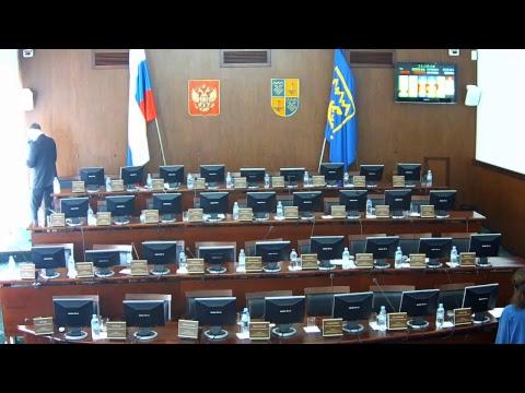Заседание Думы Тольятти 20.03.2019г.