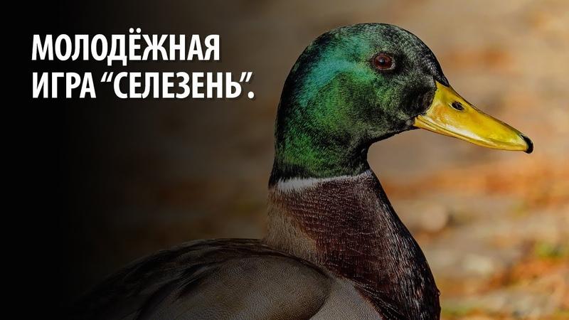 Молодёжная игра Селезень.