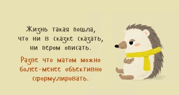 https://pp.vk.me/c543106/v543106352/22788/U2Yz2UYAU5k.jpg