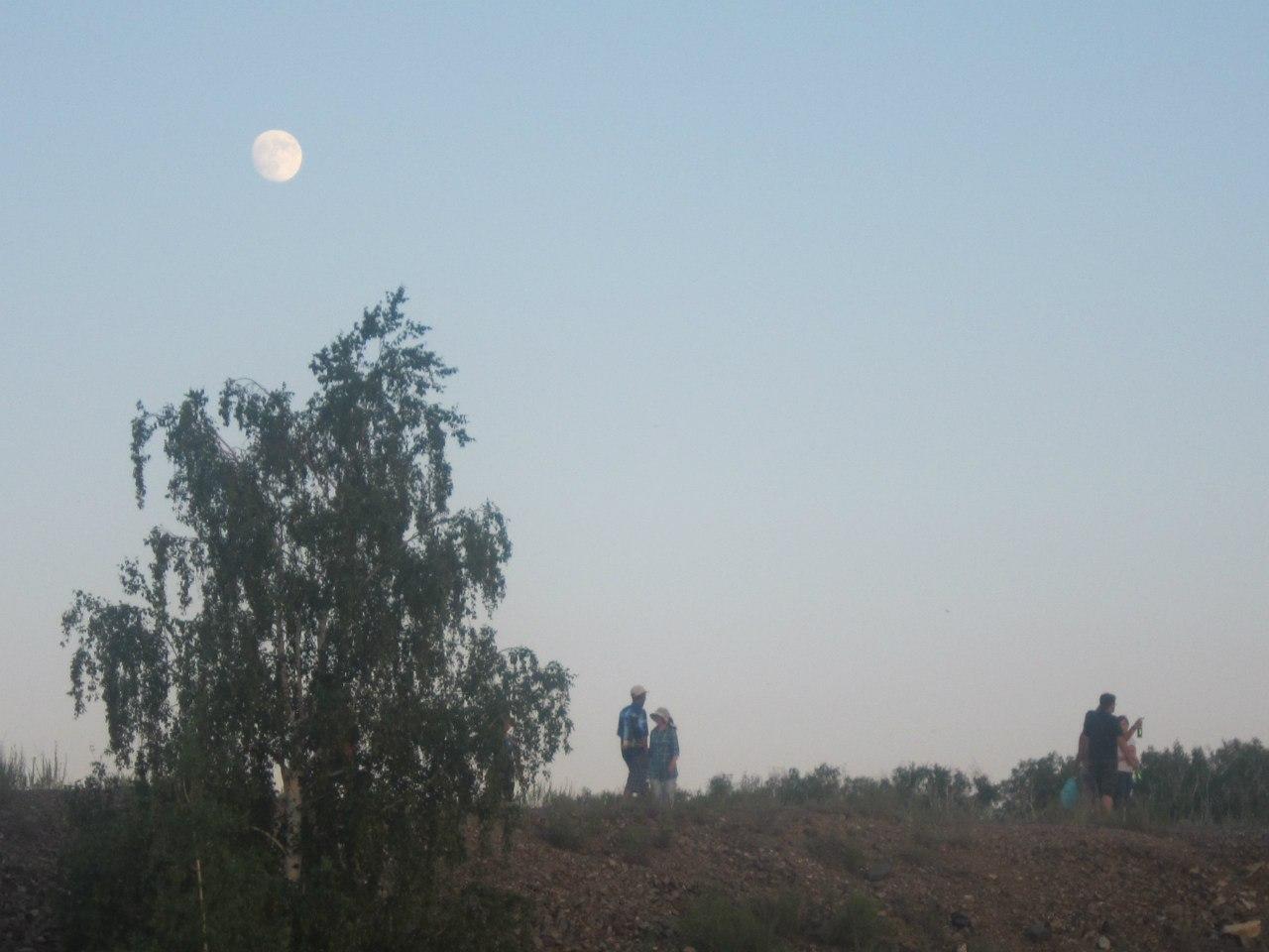 Ещё не село солнце, а уже взошла Луна. Точнее не взошла, а проявилась на ещё светлом небе. (25.06.2013)
