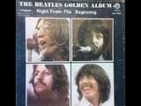 The Beatles - Beatles For Sale Album - Vinyl 10 Record Set