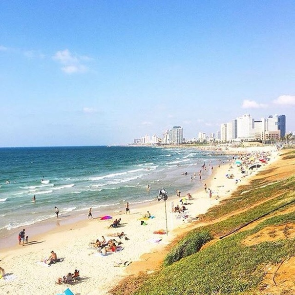 Петербург: авиабилеты в Израиль (Тель-Авив) от 12500 рублей туда-обратно с февраля по апрель