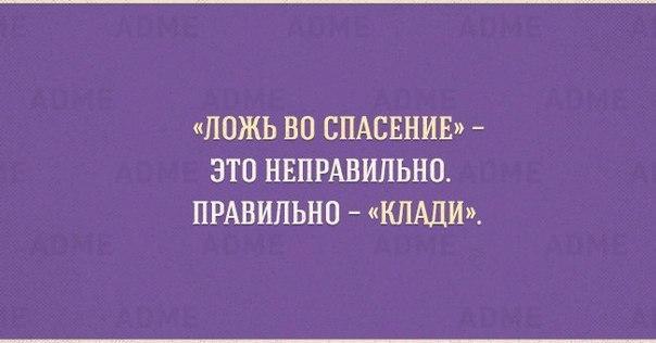 kJhoAlcaxB0.jpg