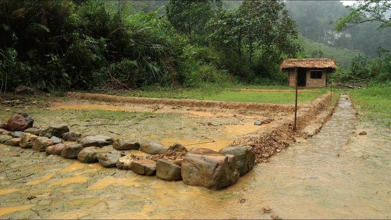 Primitive technology Farmland, land reclamation to grow rice - Part 1