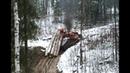 Вывозка леса в России Когда едет только трактор или Урал лесовоз