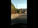 Автоботы в Приамурье