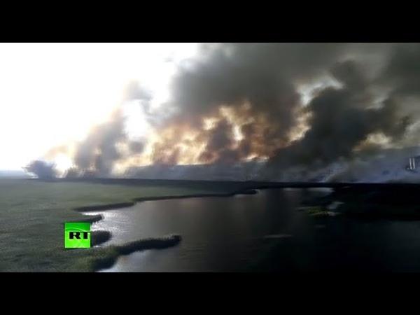 Под Анапой природный пожар тушит авиация МЧС