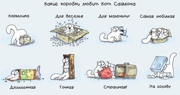 Re кот саймона simon s cat