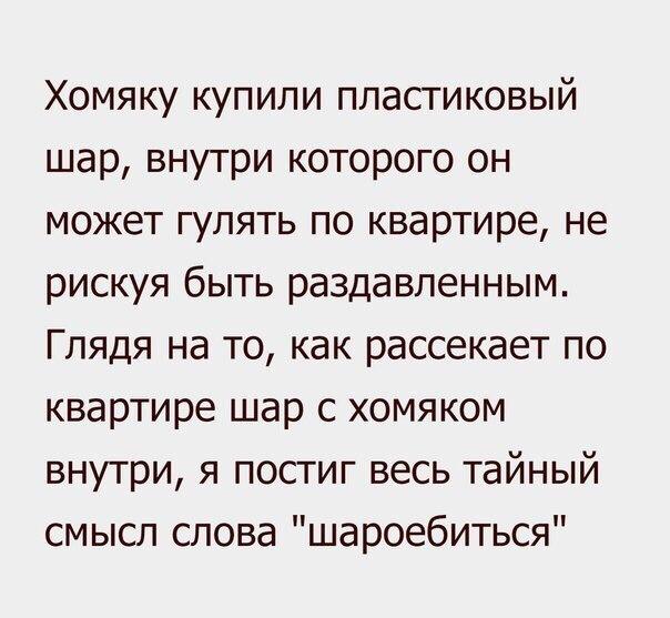 http://cs543101.vk.me/v543101259/260af/d77arR5AHtQ.jpg