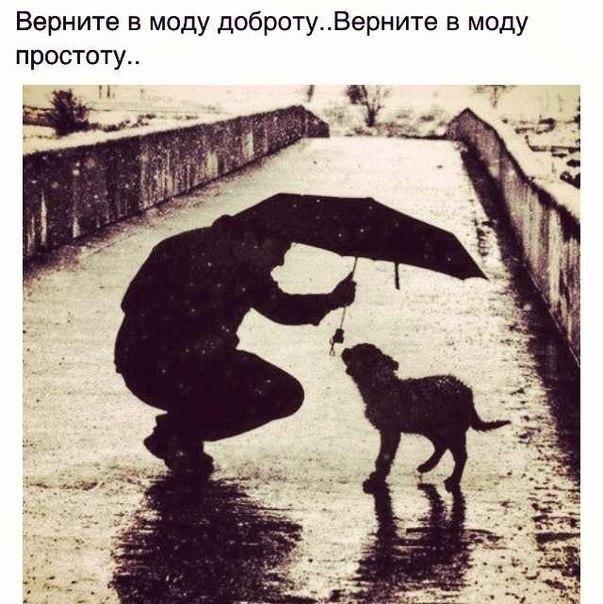 про жизнь картинки вк