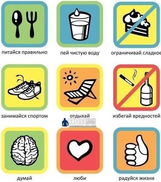 17 здоровый образ жизни