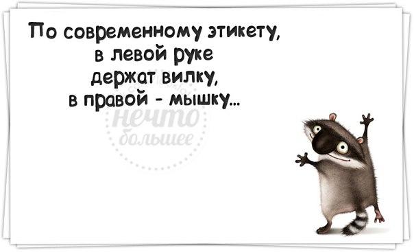 http://cs409418.vk.me/v409418400/9a50/iJcdmrIx9zQ.jpg