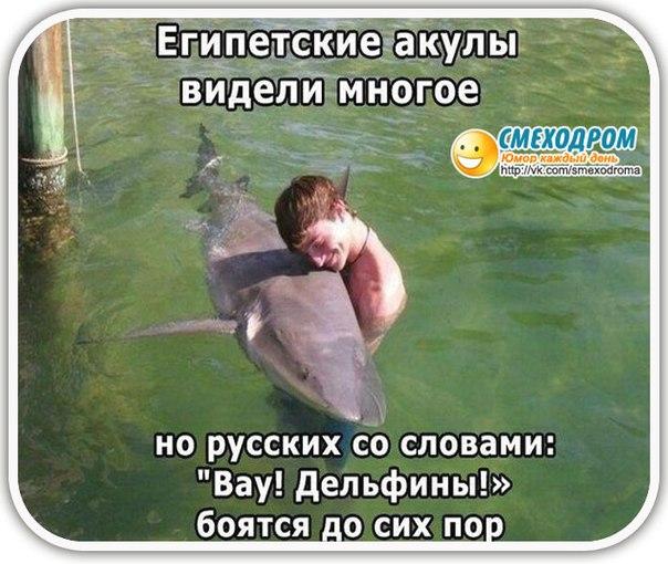 http://cs317727.vk.me/v317727419/861c/ms-CTjvUEZo.jpg