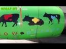 [OGO-GO] Как летать на самолете бесплатно (авиабилеты дешево)