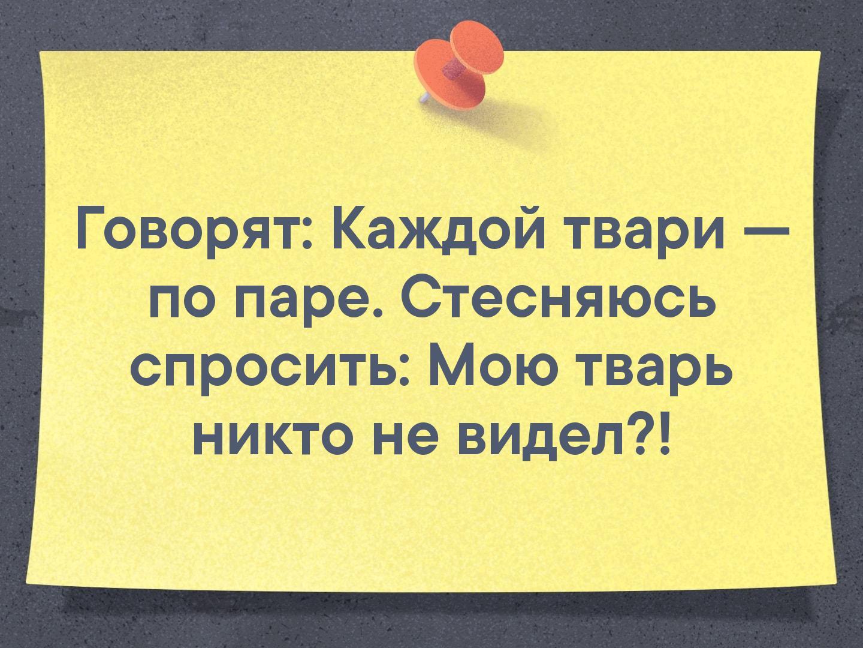 Фото №456258078 со страницы Оксаны Александровой