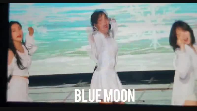 190123 가온차트 뮤직 어워즈 한 여름의 크리스마스 cam preview - 슬기 SeulGi 레드벨벳 RedVelvet