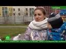 В Петербурге детский сад не могут ввести в эксплуатацию. Комментарий для НТВ Ольга Шарыгина