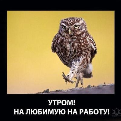 Kent Незлобин, 17 декабря 1987, Кировоград, id126706151