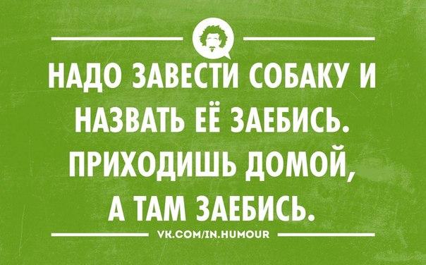 http://cs618224.vk.me/v618224486/c499/mVpjbKhTPzE.jpg