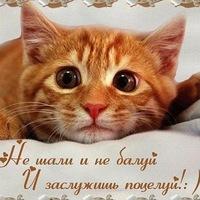 Володя Трошин, 20 декабря 1964, Москва, id208513274