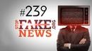 Российский Первый канал вновь опозорился на весь мир SFN 239