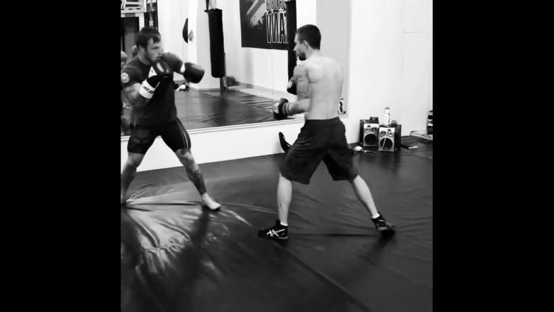 Открытая тренировка Britan Fight Club