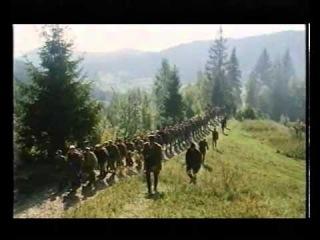 Пасха на Луганщине прошла под минометные обстрелы и автоматные перестрелки, - Москаль - Цензор.НЕТ 4195