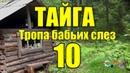 Тайга Тропа бабьих слез 10 из 16