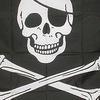 День рождение Пирата