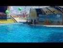 аквапарккоктебель2018