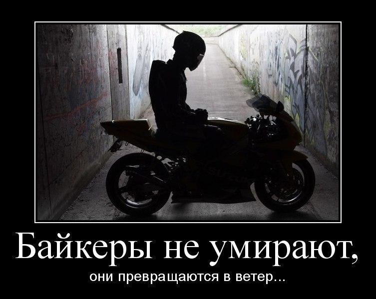 Дмитрий Кожевников | Звенигород
