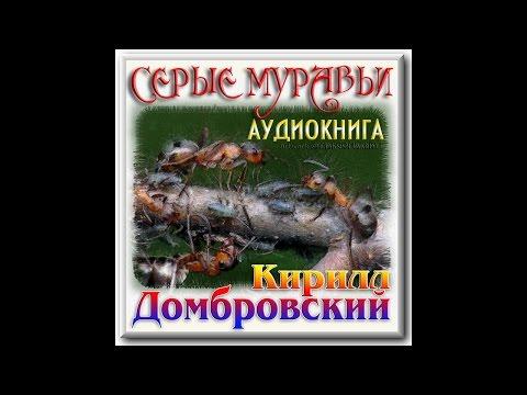 К. Домбровский. Серые муравьи. Часть 1(1). Аудиокнига