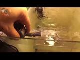 Atman VA 230IPF - фильтр для аквариума до 50 литров. Обзор, тест-драйв фильтра