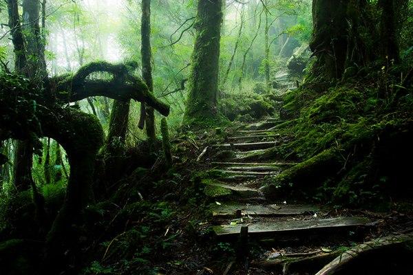 Гора Тайпин, Тайвань