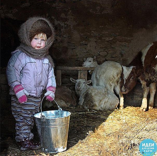 мамка ногу повредила, растянула связку. подою корову зорьку и козу - ромашку! надо маме помогать. надо маму