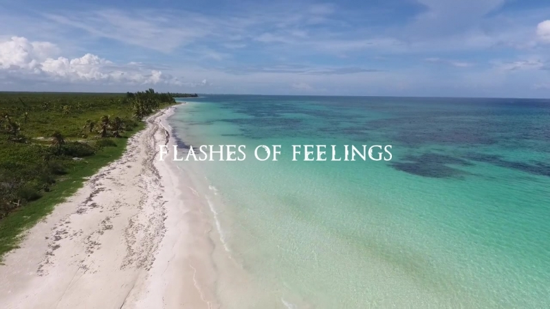 Skif Bazzaty FT Dave T - Flashes of feelings