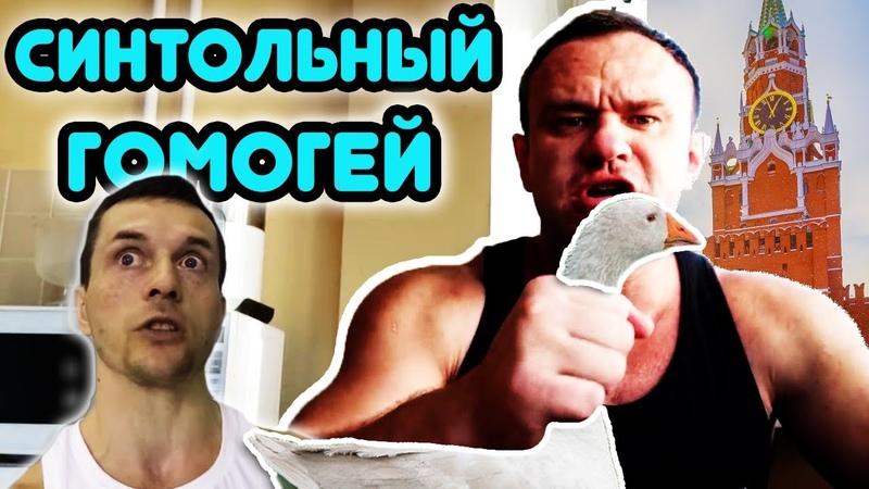 Синтольный гомогей Стероидмен