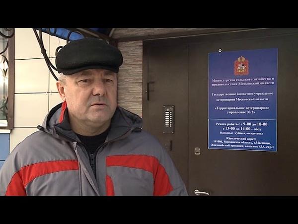 В городском округе Мытищи бешенство?