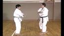Karate Kihon Ippon Kumite 4 16