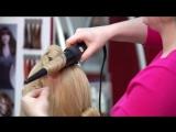 Как правильно выбрать плойку для волос?