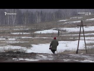 Как живет деревня в Красноярском крае, где 100% жителей голосуют за Путина   Сибирь.Реалии