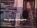 Стеклянный зверинец The Glass Menagerie 1987 Реж Пол Ньюман