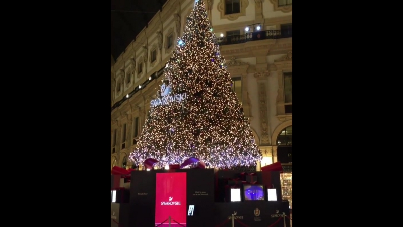 Press Play ▶️ and Christmas Tree in Milan ✨🎄
