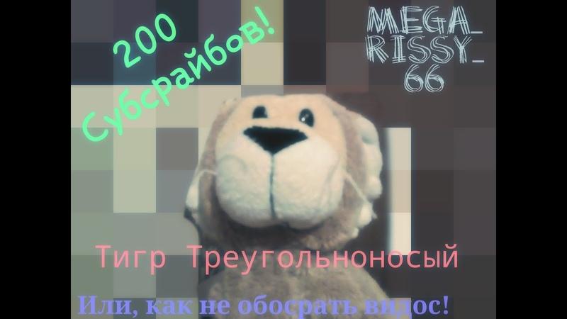 200 СУБСКРАЙБЕРОВ ИЛИ КАК НЕ ЗАПОРОТЬ ВИДОС №2