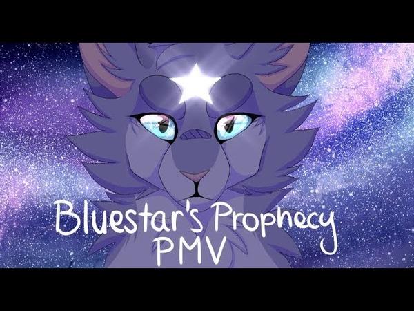 [PMV] Bluestars Prophecy - Unbreakable