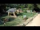 Живые динозавры в Крыму