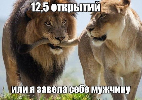Хохоталка 5rfsO3NVkm0