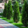 Санаторий «Солнечный» Брест, Беларусь|Белоруссия