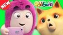 Oddbods PURR FECT CAT SELFIE NEW Full Episodes of Oddbods Show Funny Cartoons For Kids